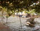 Vanzare Casa la sol Ovidiu  pret 45000  EUR